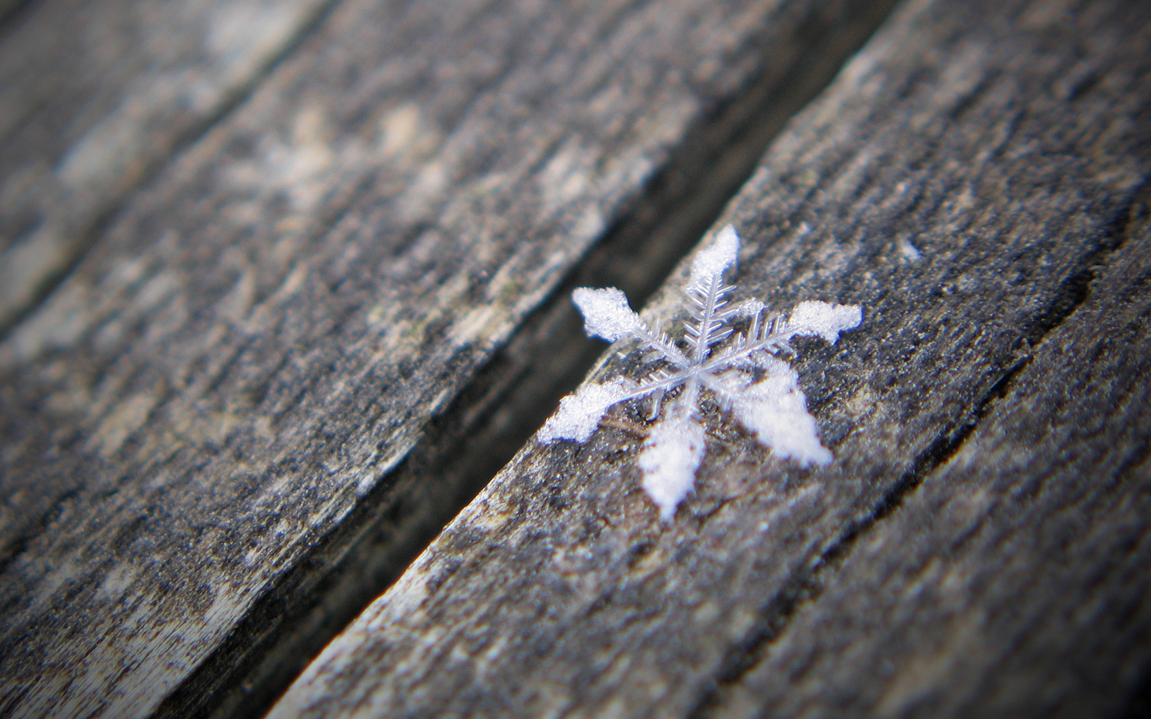 Snow flakes... -- Macro in photography-on-the.net forums